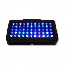 Evergrow IT2040 Remote Control LCD Marine Led Light