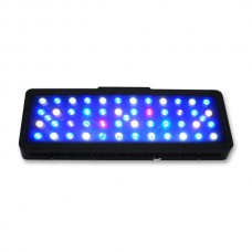 Evergrow IT2060 Remote Control LCD Marine Led Light